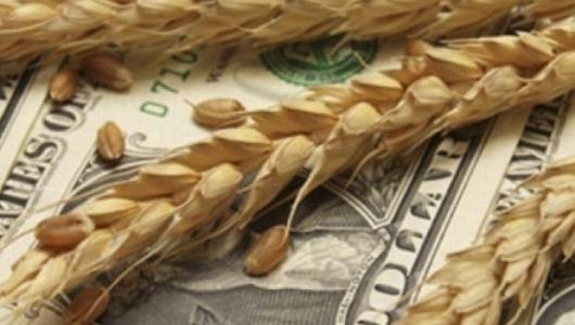 Российская Федерация в 2016 стала крупнейшим экспортёром пшеницы