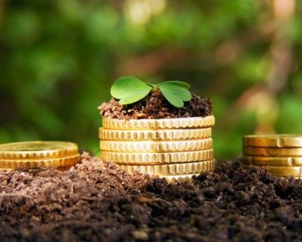 В РФ начали выдавать аграриям льготные кредиты поновому механизму