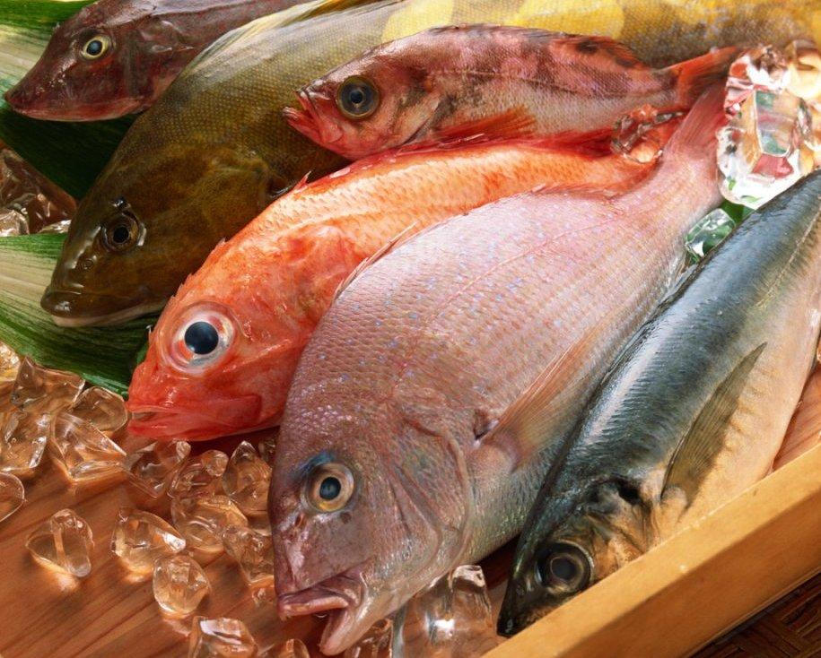 Бразилия позволила ввоз рыбы из РФ