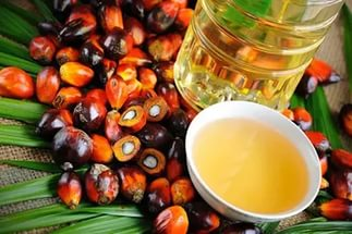 Overview of palm oil imports to Russia in may 2017