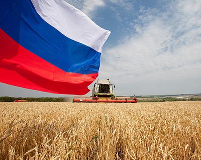 Экспорт пшеницы увеличился на9,3% попоследним имеющимся данным на28июня
