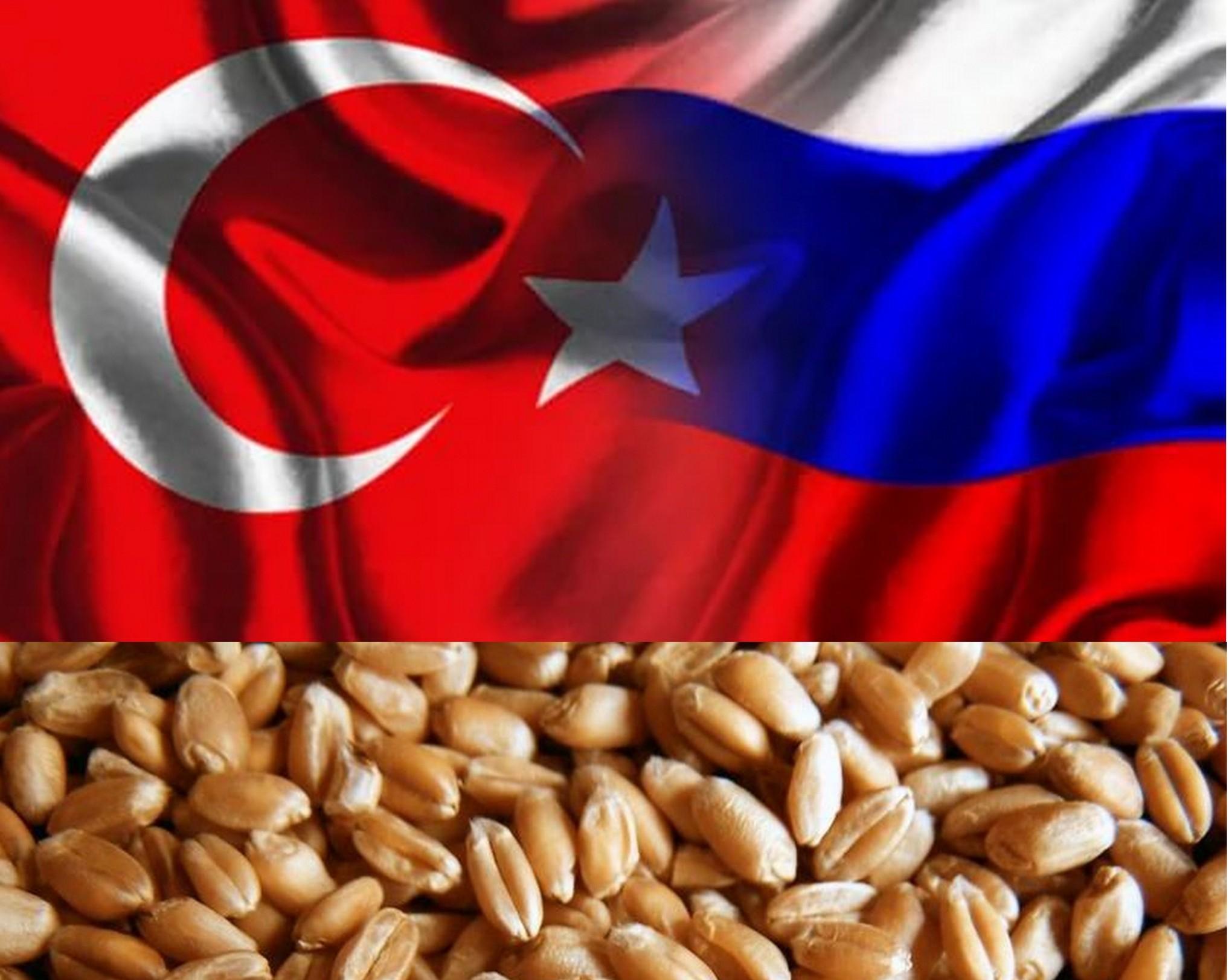 Экспорт зерна изРФ достиг 35,1 млн тонн