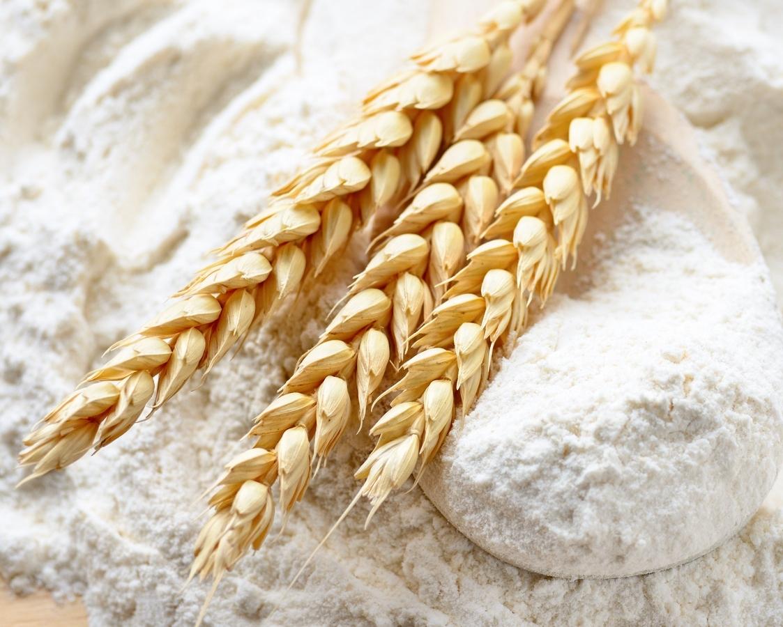 Экспорт зерна в2016/2017 увеличился до43,8 млн тонн