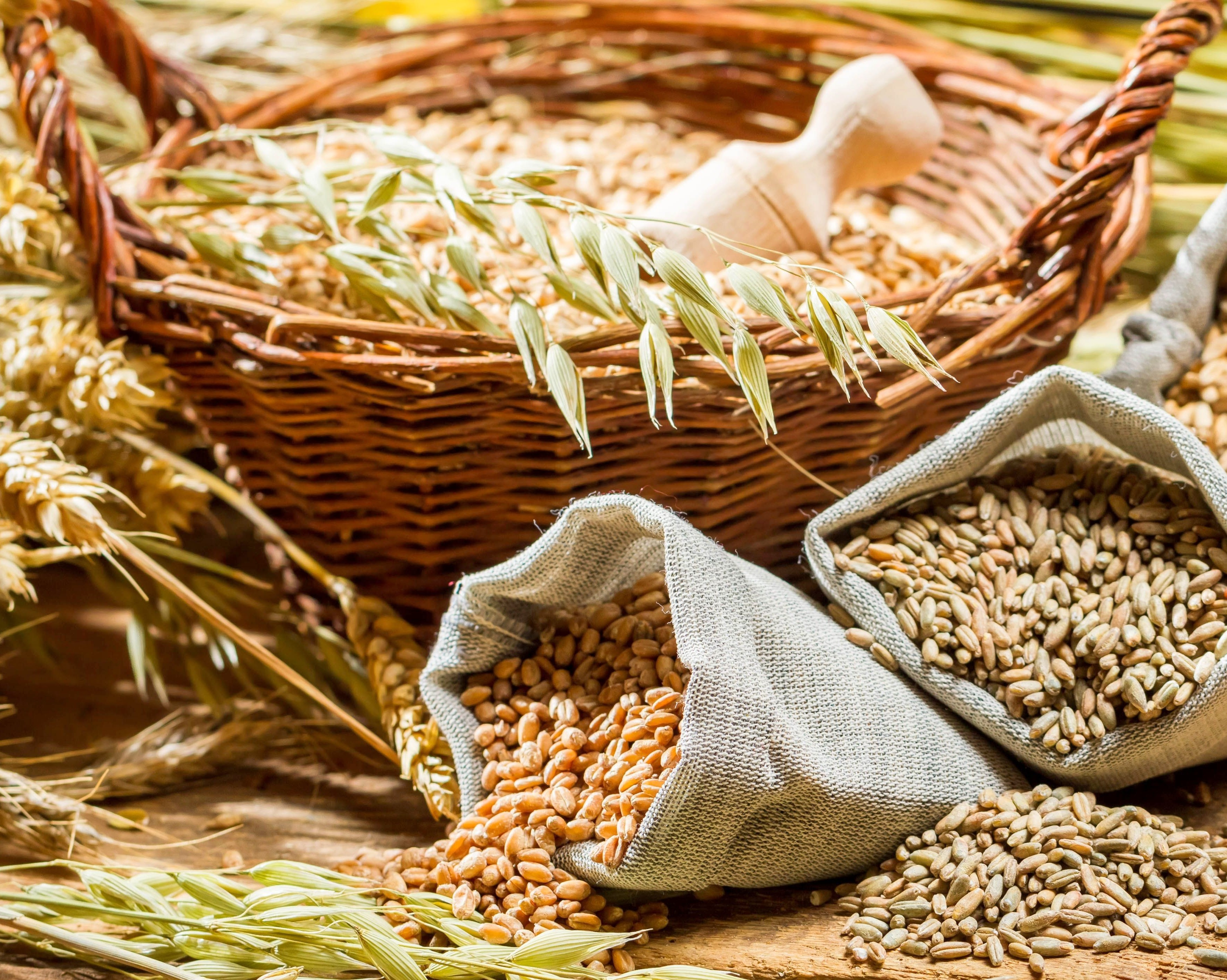 Украинские аграрии уже собрали практически 20 млн тзерна
