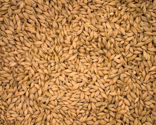 Вгосударстве Украина собрано практически 20 млн тонн ранних зерновых,