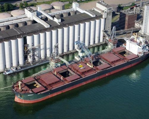 Минсельхоз: на2августа собрано 44 млн тонн зерна