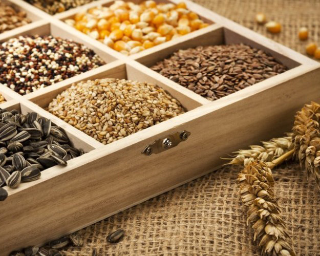 НаКубани планируют построить завод попроизводству семян сои