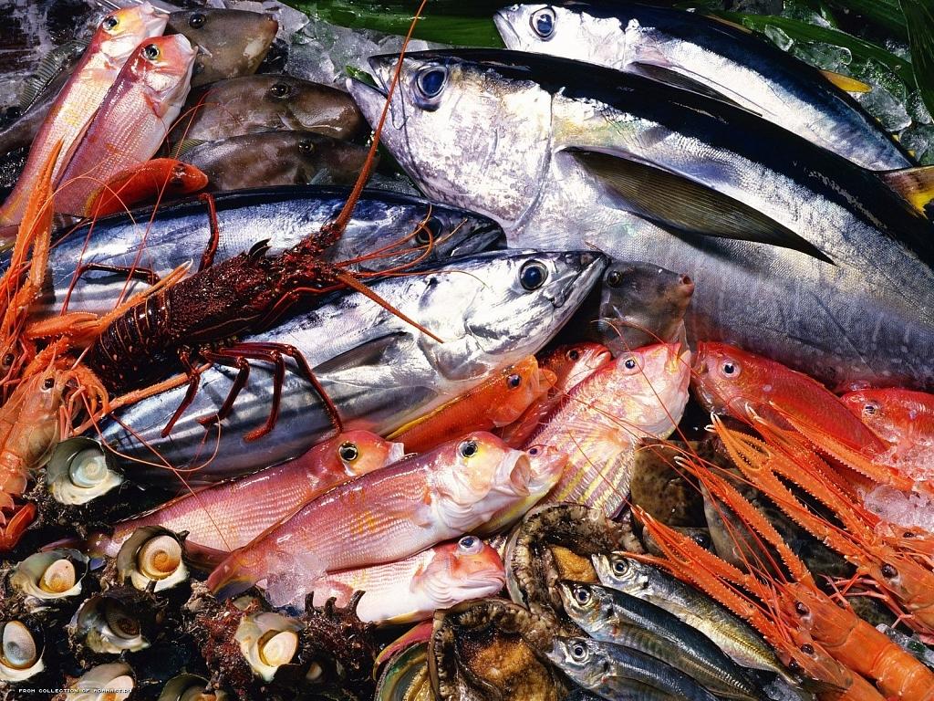 Компания изКитая хочет производить вПриморье малька для аквакультуры