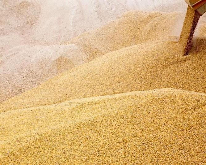 Украина нарастила экспорт зерновых