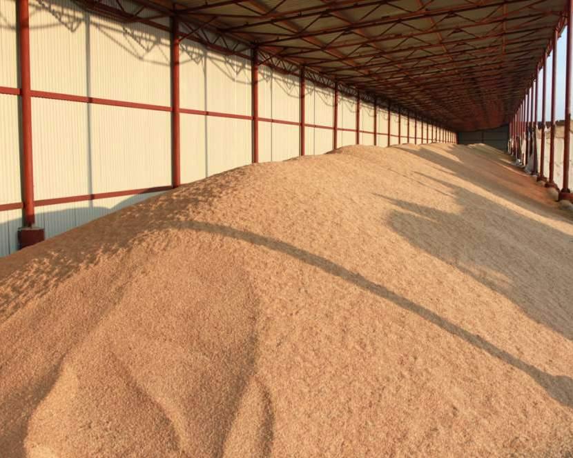 Запасы зерна в Российской Федерации кначалу декабря превышали 52 млн тонн
