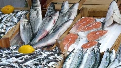 Рыбодобывающие предприятия Астраханской области впервые получат гранты на переработку рыбы