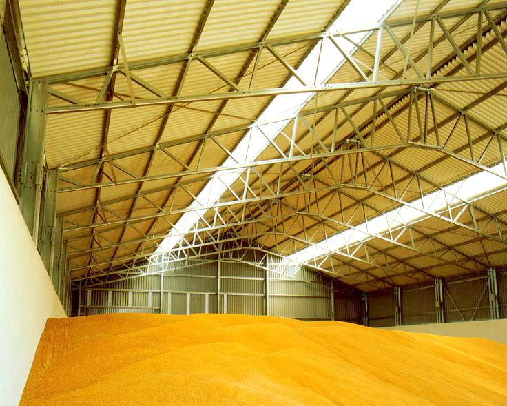 В РФ растут запасы зерна