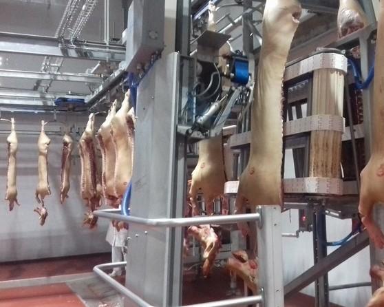 Коммутационный фундамент роботизации и цифровизации Курского мясоперерабатывающего завода